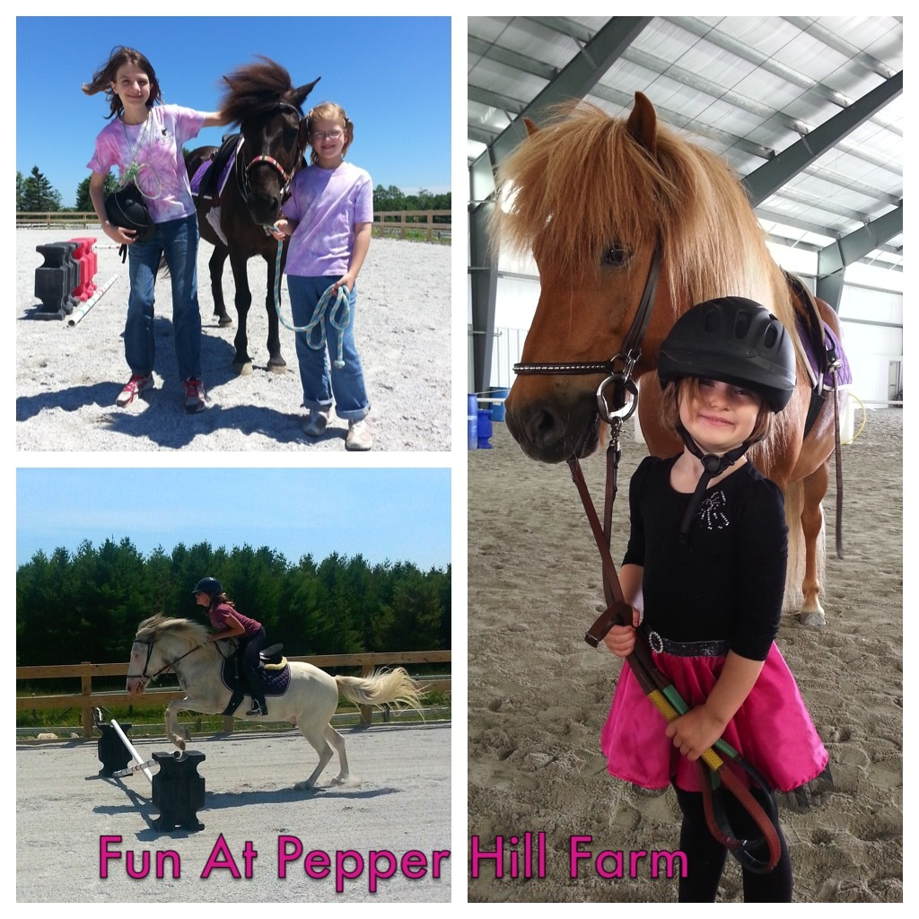 Pony Camp @ Pepper Hill Farm | South Thomaston | Maine | United States