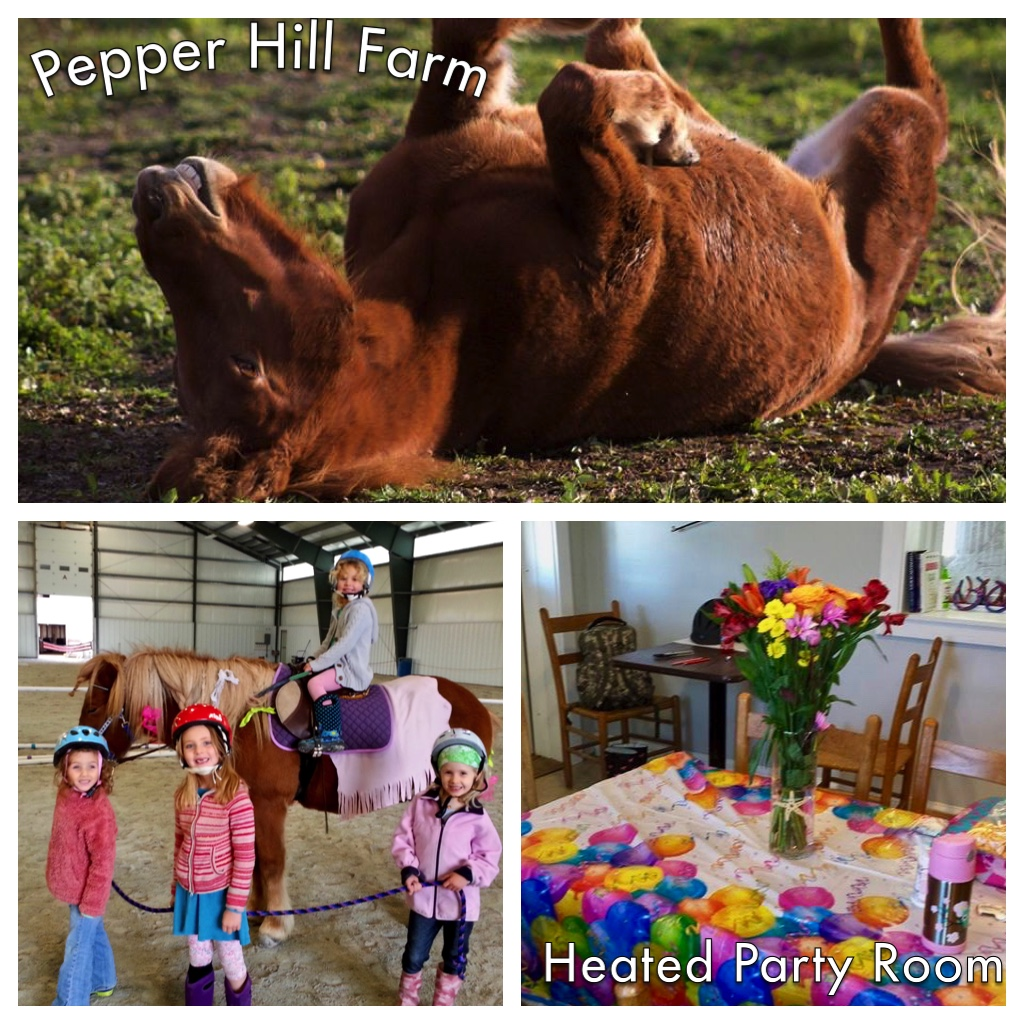 Pony Birthday Parties At The Farm Pepper Hill Farm