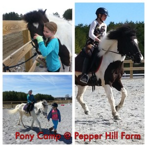 Summer - Riding Camp - Tuesday - Friday @ Pepper Hill Farm | South Thomaston | Maine | United States